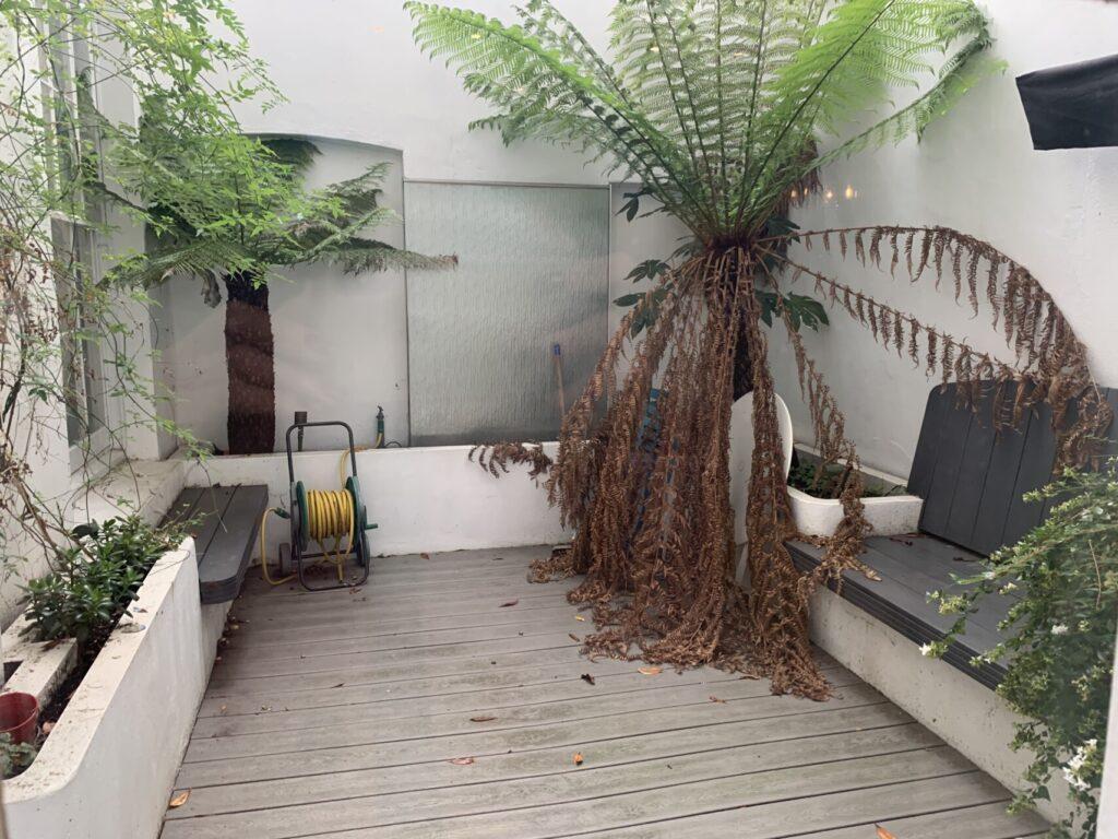 10a Courtyard Before